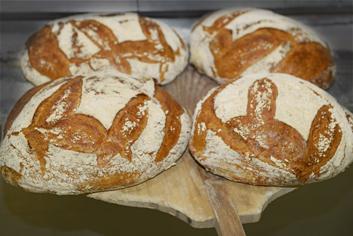 Pan da moa - Panadería Moscoso Moure